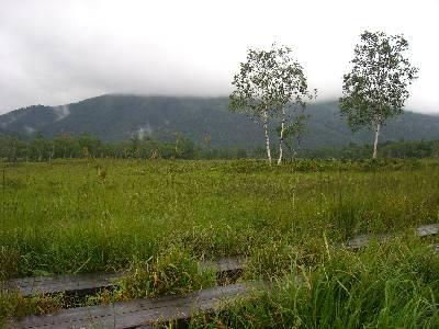 尾瀬ヶ原の景色