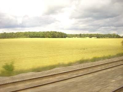 車窓に広がる田園風景