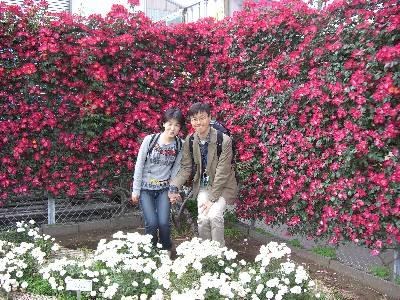 バラの生垣の前で記念撮影