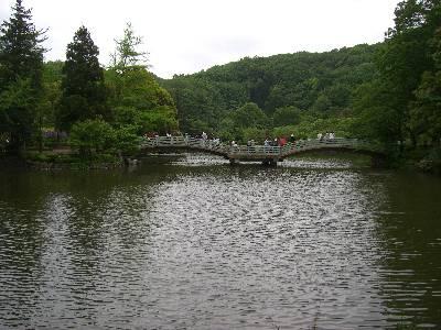 薬師池公園の池