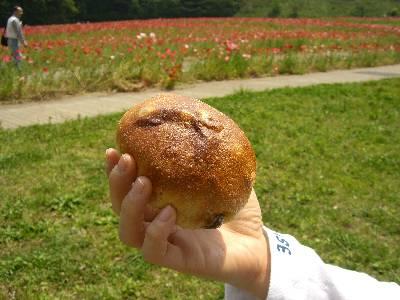 これは何のパンだったかな...