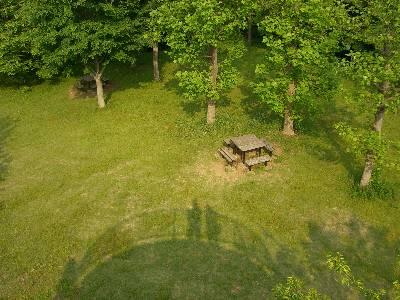 展望台から見た芝生広場