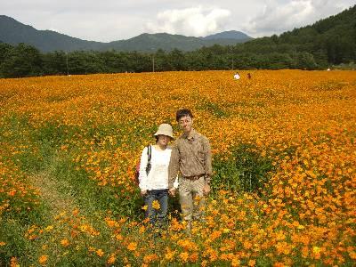 キバナコスモスの花畑で記念撮影