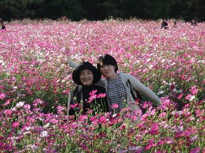 母と妻とコスモス畑