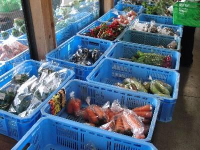 道の駅那須高原友愛の森で売っていた野菜