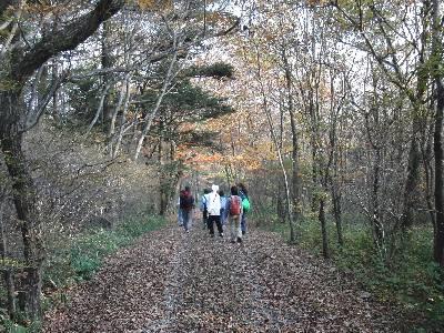 紅葉が綺麗な道を歩く参加者
