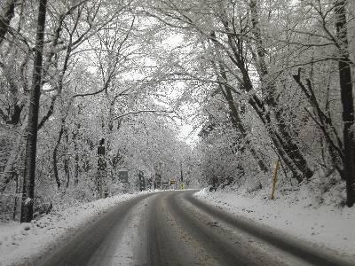 積雪の山中湖北岸道路のママの森付近
