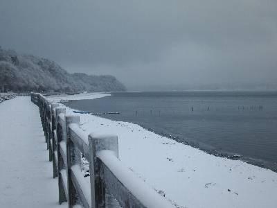 粉雪降り積もる山中湖北岸