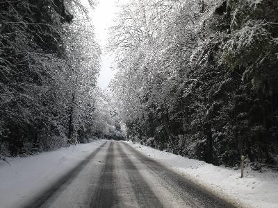 積雪の県道 71 号線