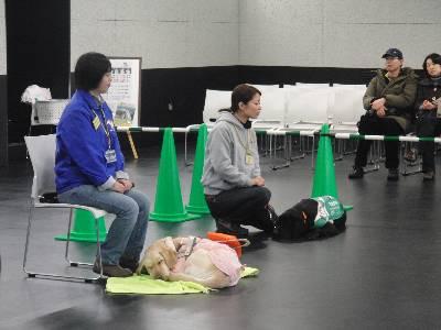 デモンストレーション会場の職員の方と盲導犬とデモンストレーション犬