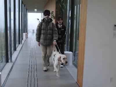 盲導犬体験歩行中の奥村