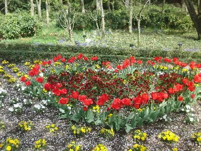 ハート型に植えられた赤い花