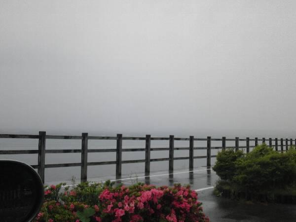 富士山が全く見えない山中湖北岸長池親水公園からの眺め