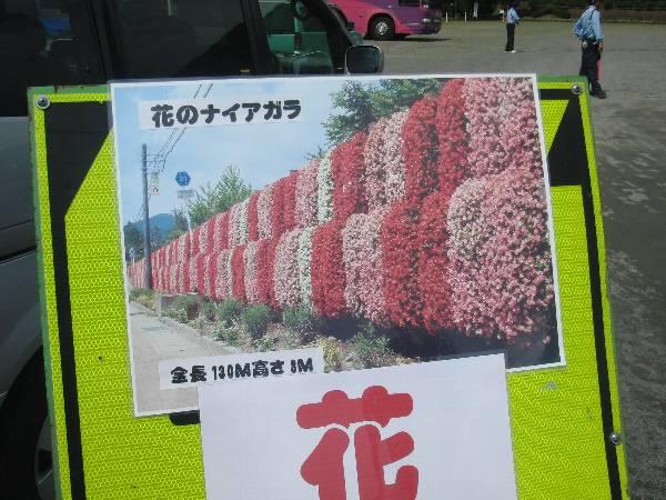 花のナイアガラ案内看板