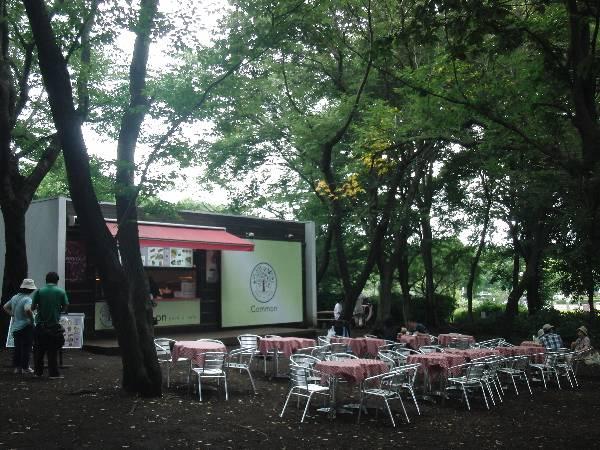 コモン・カフェ Common Cafe