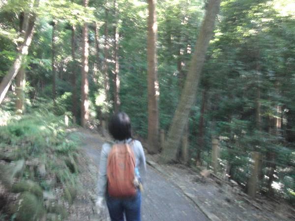元気に谷戸山公園を歩く妻