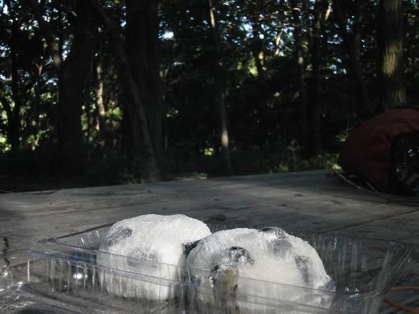 森の中で食べる黒豆あんびん