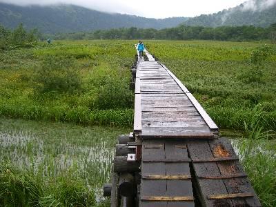 尾瀬ヶ原内の川にかかる橋