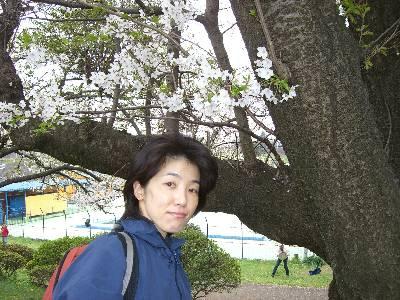 桜の木と妻