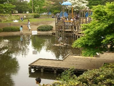 池に浮かぶ珍しい遊具