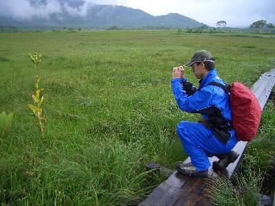 上の写真の植物を撮影する奥村