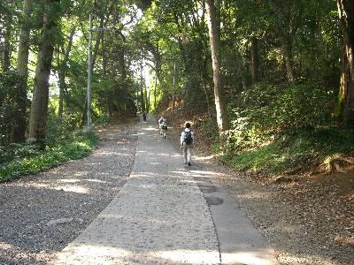 舗装された登山道