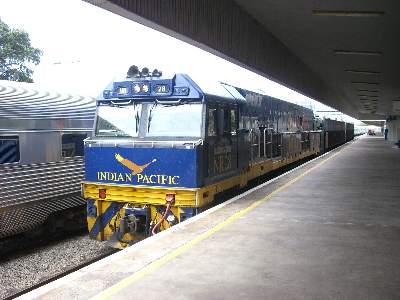 カーキャリアを運ぶ Indian Pacific 号専用塗色の機関車 2